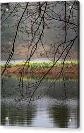 Acrylic Print featuring the photograph Sun Shower by Bill Wakeley