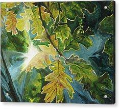 Sun Through Oak Leaves Acrylic Print