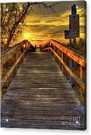 Sunbathing Ahead Tybee Island Sunrise Tybee Island Collection Art Acrylic Print