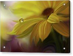 Sunbeam... Acrylic Print by Juliana Nan