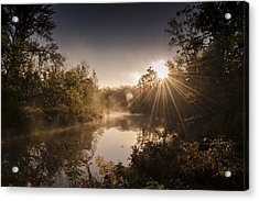 Sunbeams  Acrylic Print by Annette Berglund