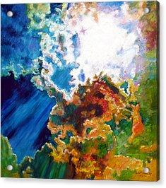 Sunburst Acrylic Print by John Lautermilch