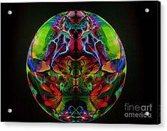 Suncatcher Acrylic Print by Dan Cope