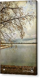 Sunday By The Lake II Acrylic Print by Chris Armytage