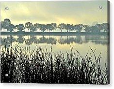 Fog At Sunrise Acrylic Print