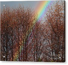 Acrylic Print featuring the photograph Sunday's Rainbow by Laura  Wong-Rose