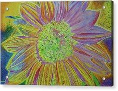 Sundelicious Acrylic Print