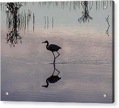 Sundown Heron Silhouette Acrylic Print