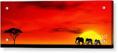 Sundown Acrylic Print by John Edwards