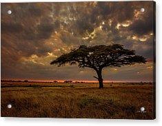 Sundown, Namiri Plains Acrylic Print