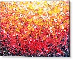 Sundrops Acrylic Print by Rachel Bingaman
