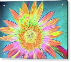Sunfeathered Acrylic Print
