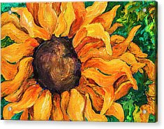 Sunflower #5 Acrylic Print