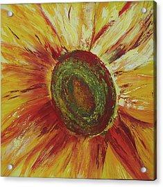 Sunflower Acrylic Print by Aneta  Berghane