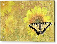 Sunflower Butterfly Yellow Gold Acrylic Print