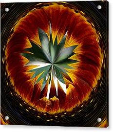 Sunflower Circle Acrylic Print
