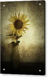 Sunflower Acrylic Print by Cynthia Lassiter