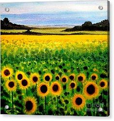 Sunflower Field Acrylic Print by Elizabeth Robinette Tyndall