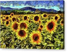 Sunflower Field Van Gogh Acrylic Print