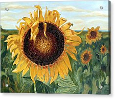 Sunflower Fields Forever  Acrylic Print by Maria Soto Robbins