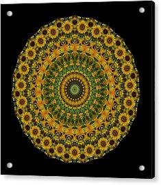 Sunflower Mandala Acrylic Print