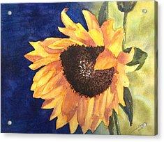 Sunflower Acrylic Print by Monika Deo