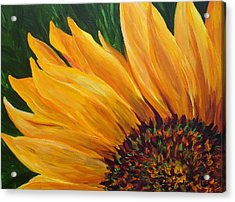 Sunflower Oil Painting Acrylic Print by Mary Jo Zorad