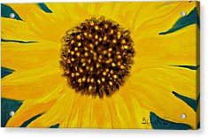 Sunflower Painting Acrylic Print by Barbara Chichester