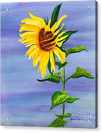 Sunflower Acrylic Print by Pauline Ross