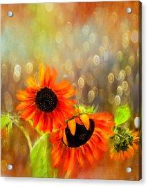 Sunflower Rain Acrylic Print