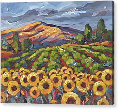 Sunflower Ranch Acrylic Print