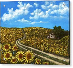 Sunflower Road Acrylic Print by Anastasiya Malakhova