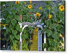 Sunflower Roads Acrylic Print