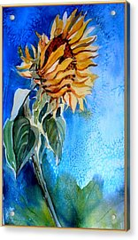 Sunflower Salute Acrylic Print by Mindy Newman