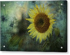 Sunflower Sea Acrylic Print