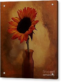 Sunflower Seed Maker Acrylic Print by Marsha Heiken
