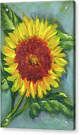 Sunflower Seed Packet Acrylic Print