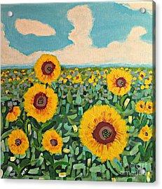 Sunflower Serendipity Acrylic Print