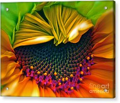 Sunflower Smoothie Acrylic Print