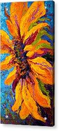 Sunflower Solo II Acrylic Print
