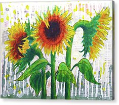 Sunflower Sonata Acrylic Print