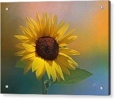 Sunflower Summer Acrylic Print by TK Goforth