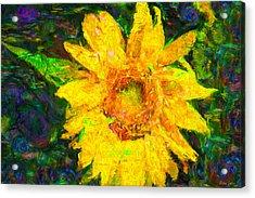 Sunflower Van Gogh Acrylic Print