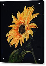 Sunflower Vii Acrylic Print