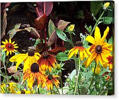 Sunflowerland Acrylic Print by Jean Booth