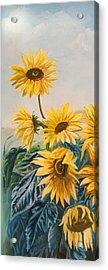 Sunflowers 1 Acrylic Print by Jana Goode