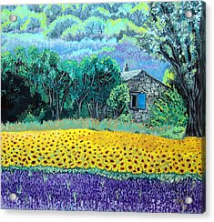 Sunflowers And Lavender Acrylic Print