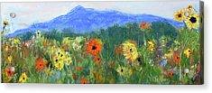 Sunflowers At Monadnock Acrylic Print by Linda Dessaint