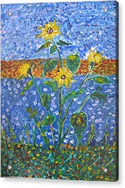 Sunflowers Bursting Acrylic Print by Dennis Poyant
