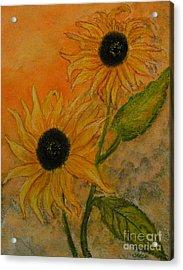 Sunflowers Acrylic Print by Carla Stein